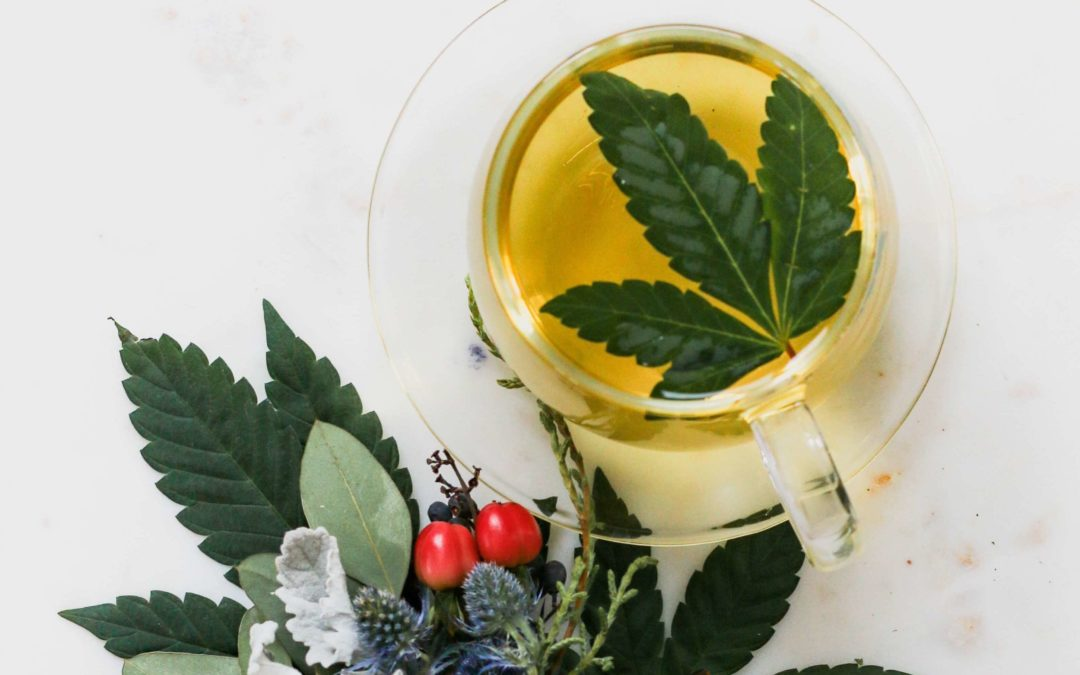 The Introduction of CBD Infused Teas